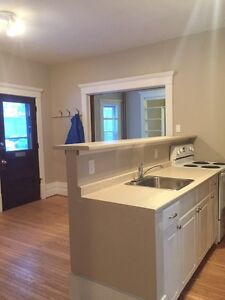 BRIGHT AND SPACIOUS 1 BEDROOM APARTMENT $875