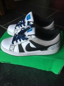 Nike isolate skate shoes/trainers (Brand New in box)