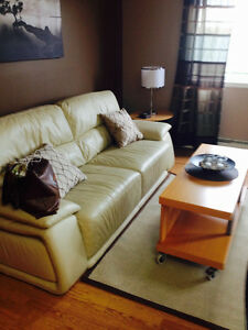 Furnished Stony Plain