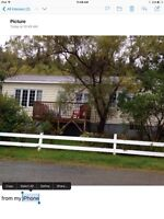 House for rent in Chance Cove, Trinity Bay