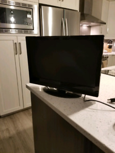 20 inch flat screen Dynex TV