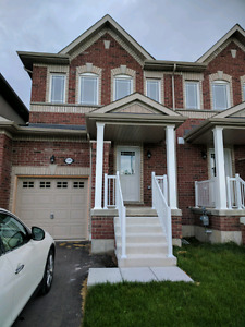BRAND NEW HOME in ALCONA FOR RENT - August 1, 2017