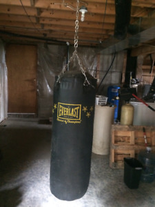 Everlast 100lb punching bag. Calls only please, ask for Peter.