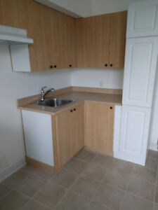 Brand new apartment for rent at the heart of Verdun