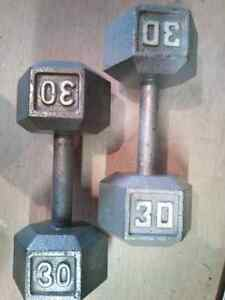 2 x 30lbs weights