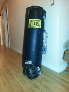 Everlast Boxing Bag, 2 Sets of Boxing Gloves and Arm Pad Bundle