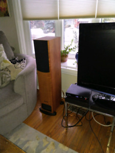 PMC FB1 floorstanding monitor speakers w/ Bryston Powerpac 120's
