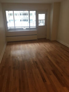 Downtown 1 Bedroom Apartment for Lease Transfer for May 2019