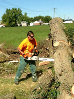 JJW landscaping and tree service