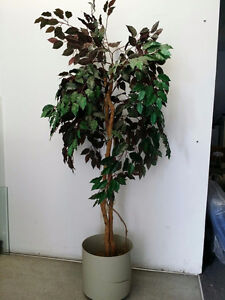 USED ARTIFICIAL PLANT