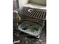 Medium Dogs Crate/Cage