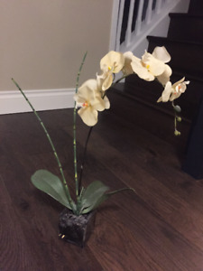 Fake yellow flowers in small square vase!