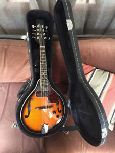 Acoustic/electric Mandolin