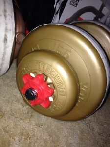 Over 300 lbs of weights (25, 10, 5, 2 1/2lbs) plus a bar $90 Kitchener / Waterloo Kitchener Area image 2