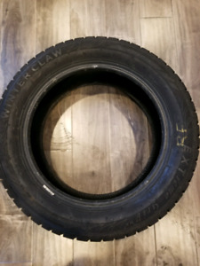 Set of 4 Winterclaw winter tires for sale 205/55R16
