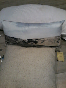 Quality throw pillows 4 for $25