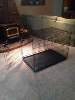 Large collapsible dog crate