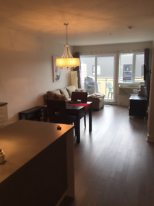 Fully Furnished-Luxury Condo-January 1st, 2018 (Dorval)