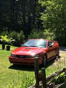 2001 Ford Mustang décapotable Cabriolet