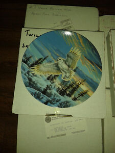 OWL PLATE COLLECTION - FROM BRADFORD EXCHANGE