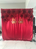 Party Backdrops for RENT!!!!!!