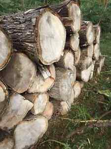Cedar Posts and Rails (Dry)