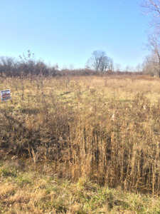 Extra Large Residential Building Lot For Sale Essex-Colchester