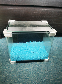Small fish tank with blue gravel