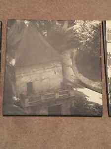 3 canvas pictures Prince George British Columbia image 2