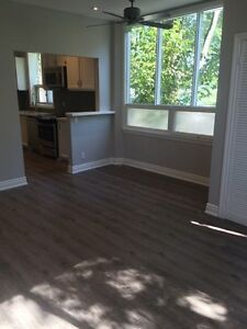 Newly renovated 2-bed apartment in Trendy Roncesvalles
