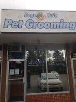 Full/Part time Dog Groomers wanted
