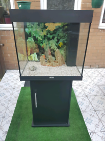 JUWEL Lido 120liter fish tank and Stand For Sale