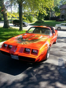 REDUCED 1980 TRANS AM