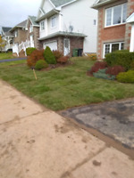 Book Your Landscaping Services Today 15%Off Pre Bookings