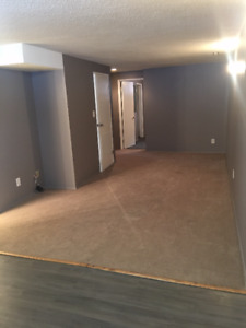 MAYLAND HEIGHTS - 2 BDRM -BASEMENT SUITE