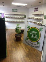 Grow your own hydro shop