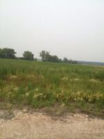 10  4 acre lots in beautiful sub division in St Clements
