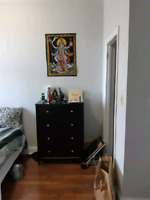 1 bedroom apartment on Division St available Sept 1