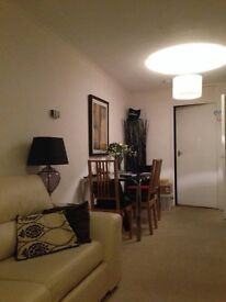 Double room in cosy West End flat available late December