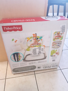 brand new in sealed box jumperoo