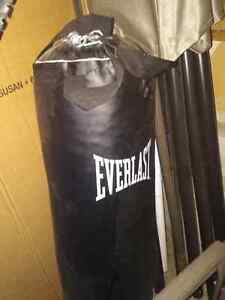 Everlast punching bag. 100lb