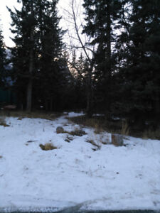 Vacant Lot Canmore Alberta