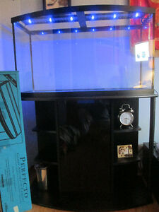 Bowed front fish tank and stand Kitchener / Waterloo Kitchener Area image 1