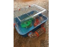 Hamster cage and birds cage