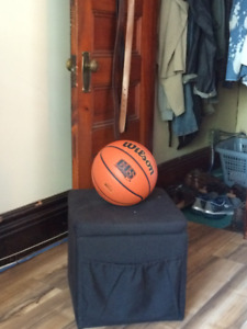 Wilson Evolution CIS Game Basketball - Size 7 (Women's)