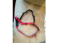 Halti harness size M