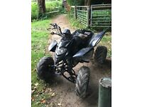 250cc shineray quad bike