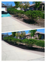 White Sails landscaping