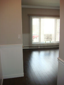 Two bedroom beautiful apartment for Immediate-no pets no smoking