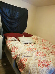 Single occupancy room for rent